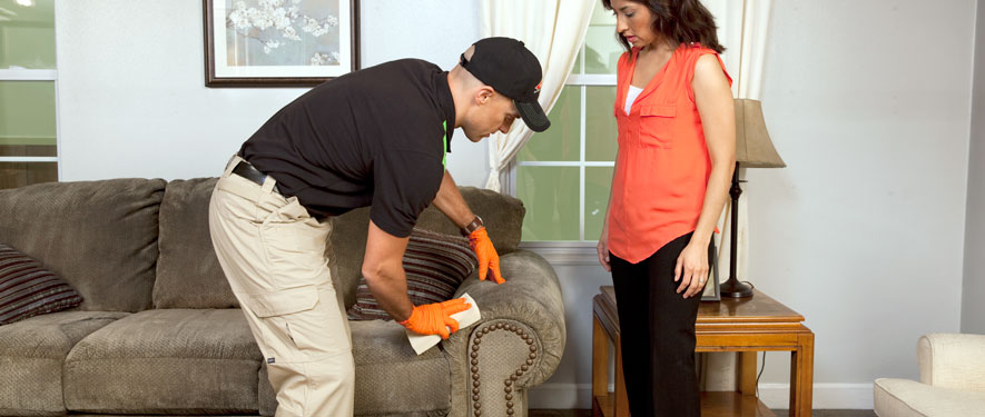 Olathe, KS carpet upholstery cleaning
