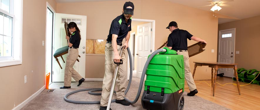 Olathe, KS cleaning services